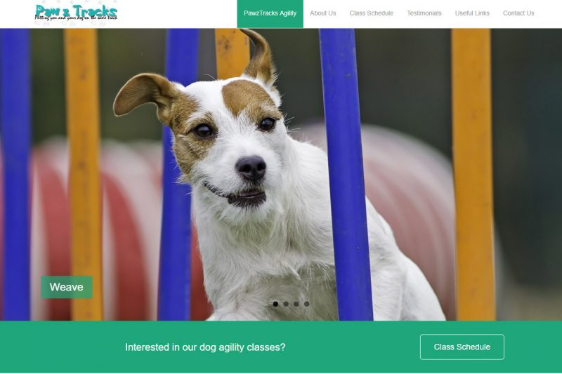 New website for Pawz Tracks – dog training services in Calgary and Cochrane